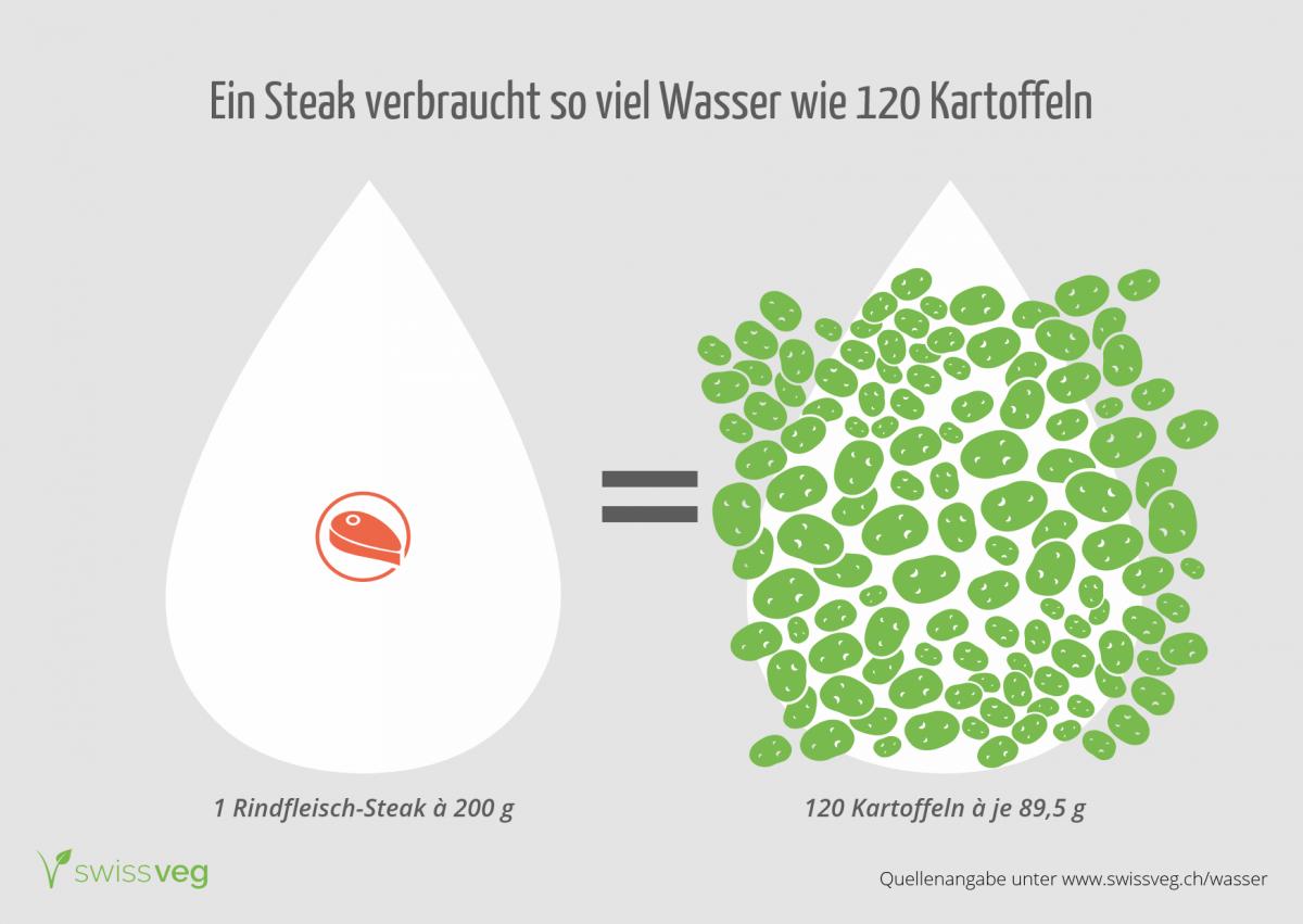 13 000 liter pro hamburger swissveg. Black Bedroom Furniture Sets. Home Design Ideas