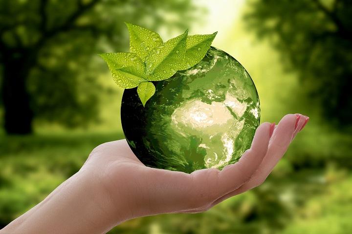 Umwelt & Ernährung