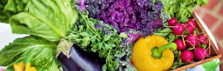 Vielfältige Gemüseauswahl