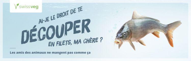 poissons, environnement, veganes